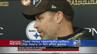 Report: Steelers' Todd Haley Suffers Hip Injury At Local Bar