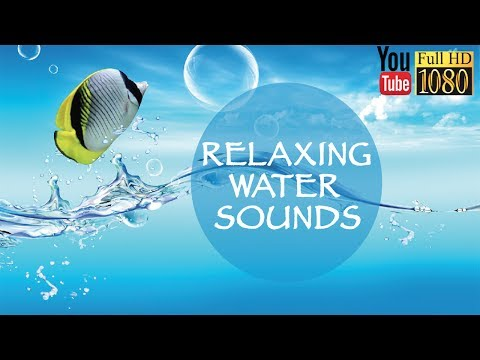 30 min 🎵 285 Hz 🎵 Soft Lounge Music 🎵 Calming Ambient Melody for Daily Relax 🎵 Background Music