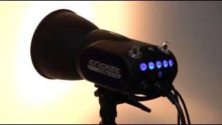 TEEDA CRICKET MB-400 動作テスト