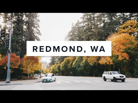 How To Spend A Day In Downtown Redmond!
