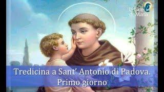 La potente tredicina a Sant'Antonio di Padova  -  giorno 1