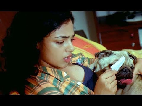 Shocking Facts About Actress Nitya Menon || Nitya Menon || Telugumedia thumbnail