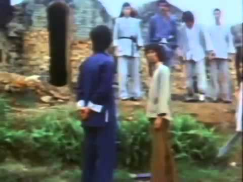 Bruce Li - Deadly Strike (1978) (English Dub)