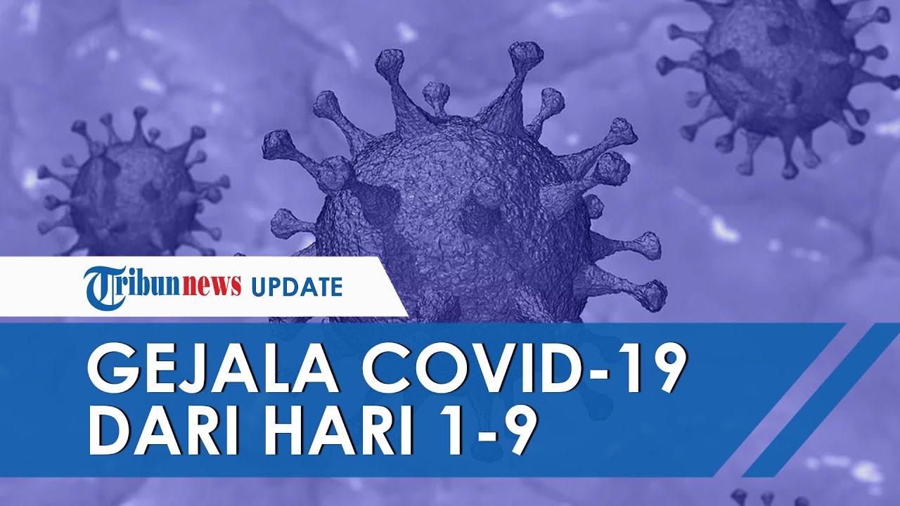 Ini Gejala Virus Corona dari Hari 1-9, Serasa Masuk Angin hingga Sakit Tenggorokan