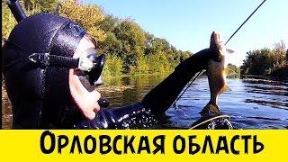 Подводная охота в Орловской области (Full HD)