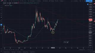 February 9th Bitcoin Cryptocurrency Alt Coin Market Update