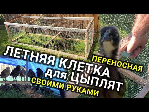 Цыплятник на улице своими руками