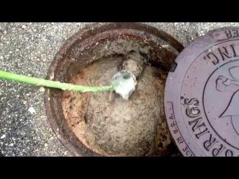 HOW TO CLEAN YOUR BONG & PIPESKaynak: YouTube · Süre: 5 dakika54 saniye
