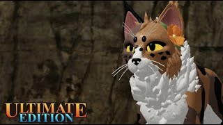 ROBLOX|How to play Warrior Cats Ultimate Edition [BETA]