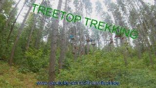 Extreme Treetop Trekking