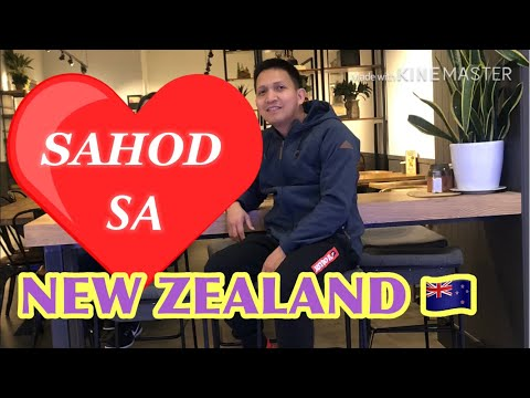SALARY SA NEW ZEALAND 🇳🇿 + WEEKLY EXPENSES #04