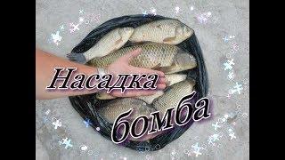 Насадка бомба💣👍 для карпа , карася и другой мирной рыбы