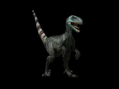 """enciclopedia-de-los-dinosaurios-3-d---""""la-muerte-de-los-dinosaurios""""-y-""""la-caza-del-deinonychus"""""""