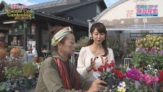 「伊藤たま眞のセンスアップガーデニング」では、あなたの園芸・ガーデ...