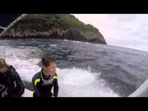 2014 Cocos Island Trip: crossing and above surface
