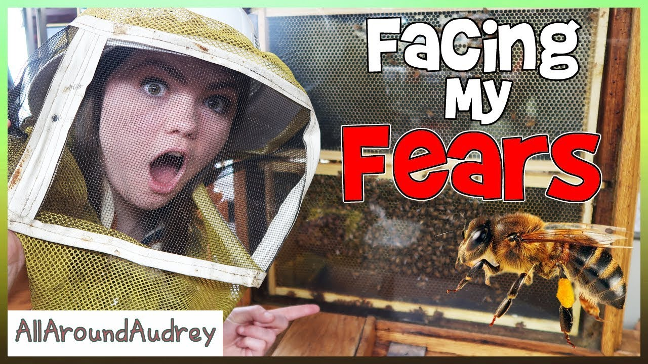 Facing My Fears - Bees / AllAroundAudrey