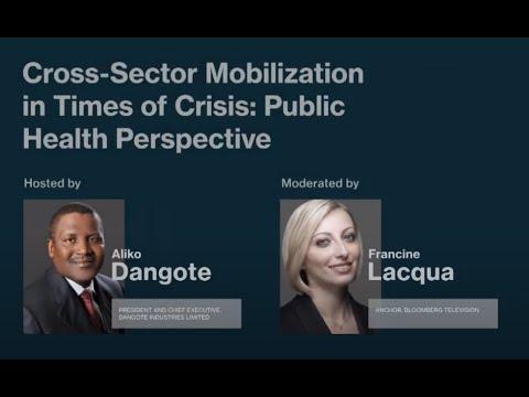 Cross-Sector Mobilization in