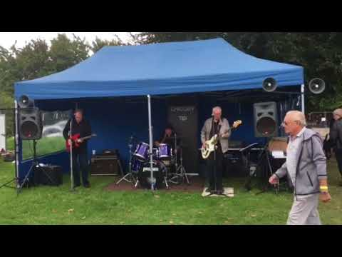 Chicory tip live in kent 2017 by jez camber