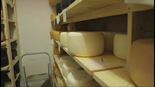 видео: Идея для бизнеса: собственная сыроварня