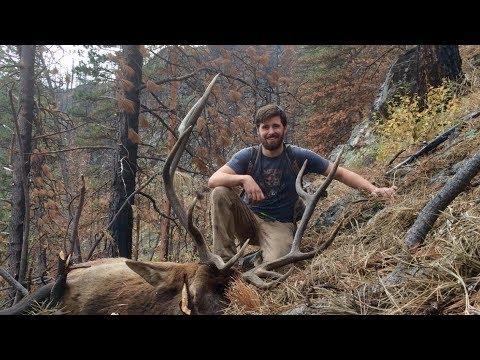 Through The Eyes Of A Hunter - Solo DIY Idaho Elk!  Limitless 31