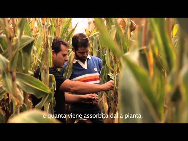 Field Connect John Deere - La testimonianza di Alberto