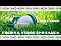 Download Niky Hindi - Frunza verde si-o lalea / Club Mix Hit aug.2017