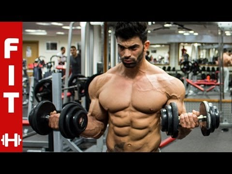 SERGI CONSTANCE TOTAL BODY AESTHETICS - Pt 1 SHOULDERS & ARMS
