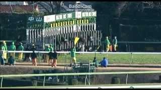 競馬 有馬記念 マツリダゴッホ 2007年 9番人気ととなったレースではメイ...