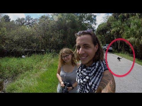 7 Momentos de MIEDO cuando captan ATERRADORAS CRIATURAS