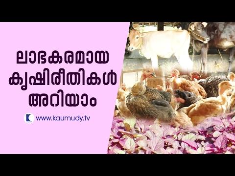 Money Making Farming Techniques & Farming at School | Haritham Sundaram