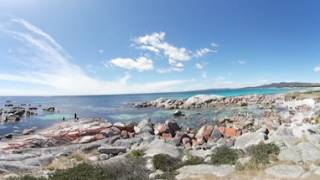 Bay of Fires in Tasmanien | Virtual Reality (VR) / 360°-VR-Video
