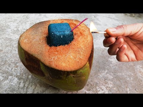 Coconut Science Experiments With Green Sutli Bomb Crackers