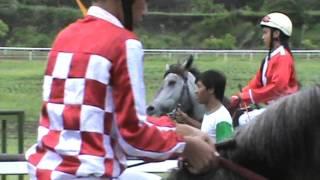 Pacuan kuda Jokey cewek cantik Part 1