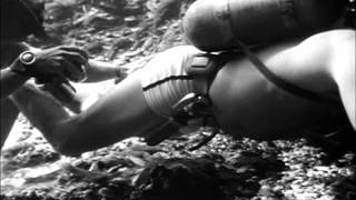 Sea Hunt 2x17 Underwater Survey