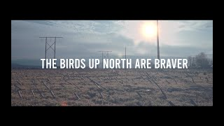 Small Town Artillery - The Birds Up North Are Braver (Official Video)