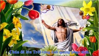Mừng Chúa Lên Trời - Hàn Thư Sinh