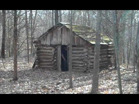 Teenagers built this log cabin in the woods of connecticut for Building a small cabin in the woods