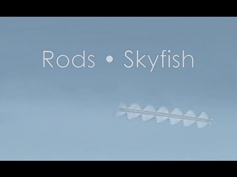 Skyfish • Rods • Mysterious Unidentified Flying Objects