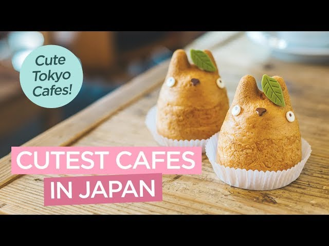 The Cutest Japanese Cafes in Tokyo - Totoro Cafe, Hello Kitty Cafe, Pompompurin Cafe