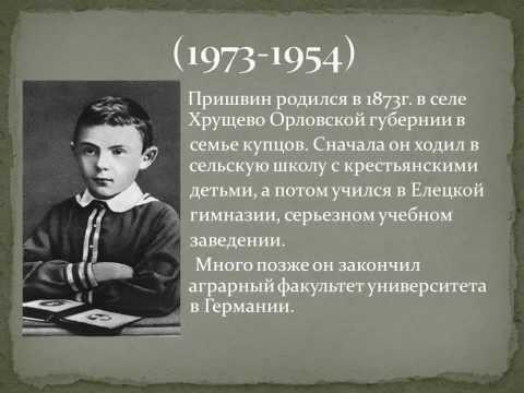 реферат биография м.вигман