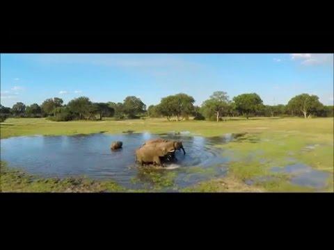 Safari Destinations - Find your perfect get away - The Hide, Hwange National Park-Zimbabwe