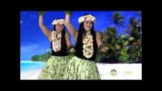 夏威夷舞 教學