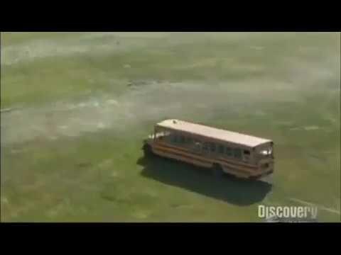 Magic School Bus Funny Theme