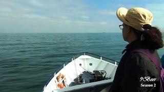 ล่องเรือ Dublin bay cruise