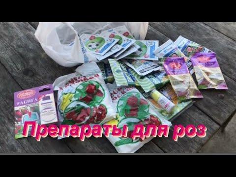 Препараты для роз от болезней и вредителей на сезон