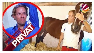 Millionär Jens Hilbert besorgt: Liebstes Pferd zu krank für Olympiade? | Promis Privat | SAT.1 TV