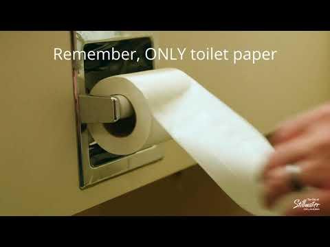Flushing the Right Stuff