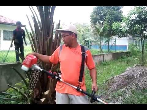Oil palm pruner, oil palm harvesters, Mesin Kelapa Sawit MORI 01