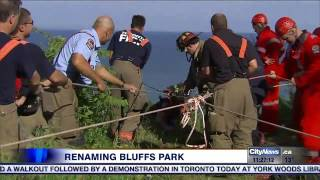 City considering renaming Scarborough Bluffs Park after confusion leads to slew of rescues