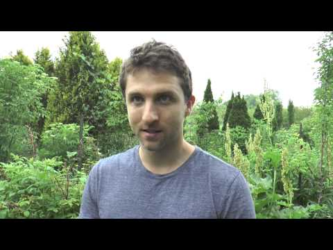 How To Grow MORE Food In LESS Space With Biointensive